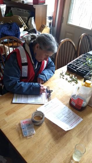 Jan Stevens working on paperwork