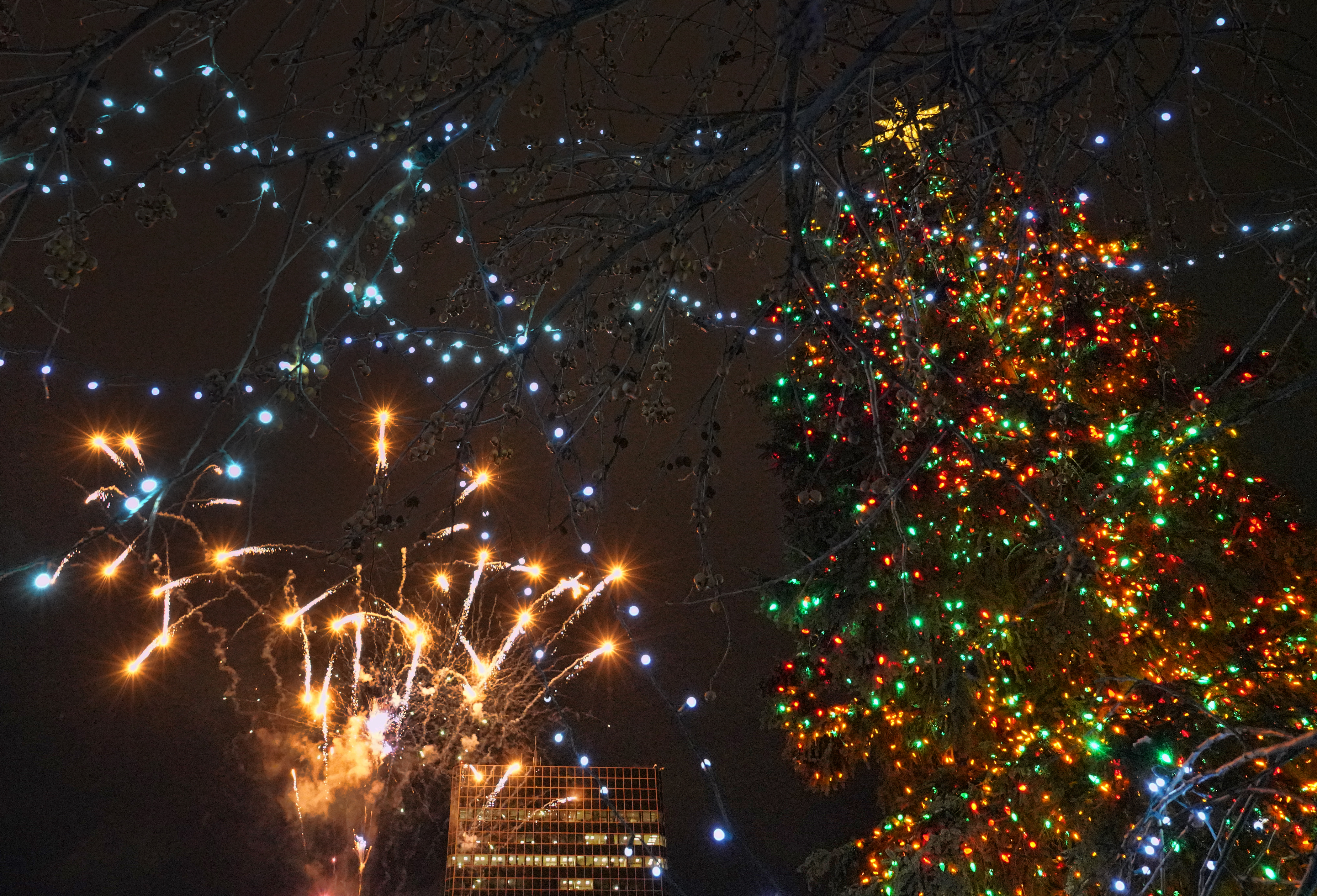 ak fireworks 14 - Photo credit Ralph Radford